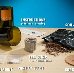 Grow Bottle Upcycled Hydrogarden Kit